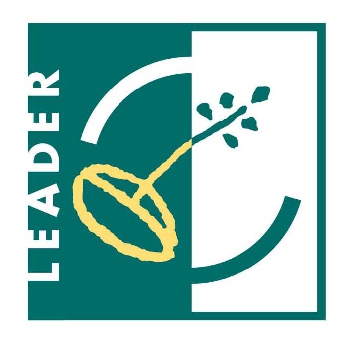 13-560-NW-LEADER-LEADER-LOGO4341751